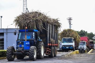 産業と再生可能エネルギーをもたらすサトウキビ モーリシャス