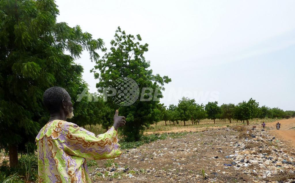 砂漠化防止の「緑の壁」、完全消滅の危機 ニジェール