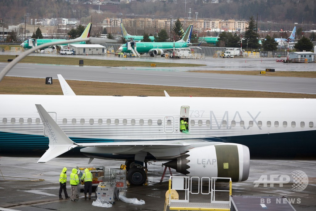 ボーイング737MAX、日本も乗り入れ停止 墜落事故受け