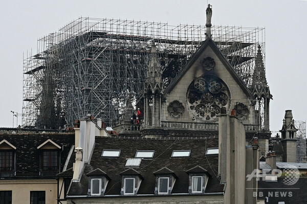 木材準備に50年、ノートルダム寺院の「伝説的」屋根 再建への道のり