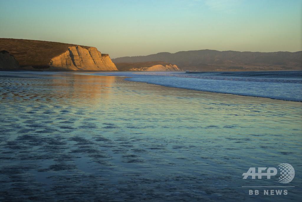 海辺に大量のユムシ、奇妙な形の珍味 米カリフォルニア州