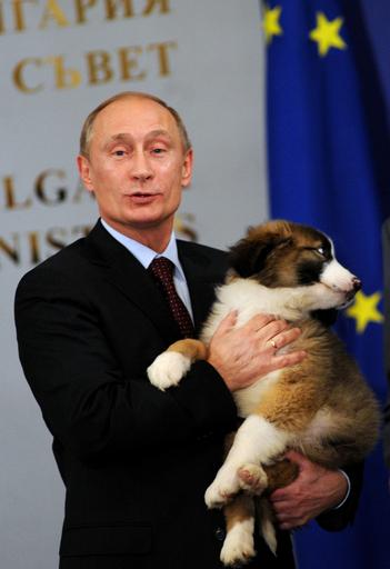 プーチン露首相、シェパード犬のプレゼントに笑顔