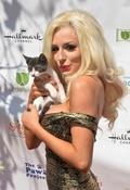 猫づくしの祭典が開幕、米ロサンゼルス