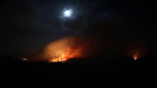 動画:カナリア諸島で大規模な森林火災、5000人が避難