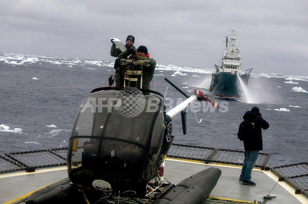 シー・シェパード、「音波攻撃は危険」と日本の捕鯨船を非難