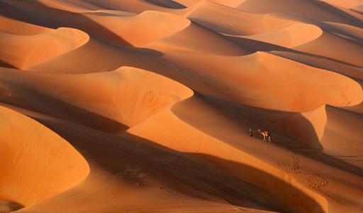 【写真特集】壮大な砂漠の世界 ― 厳しい自然環境が生んだ景色