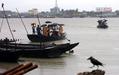 サイクロン「Sidr」、バングラデシュ南西岸を直撃