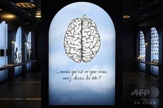 成人期の読字学習で脳が変容、研究