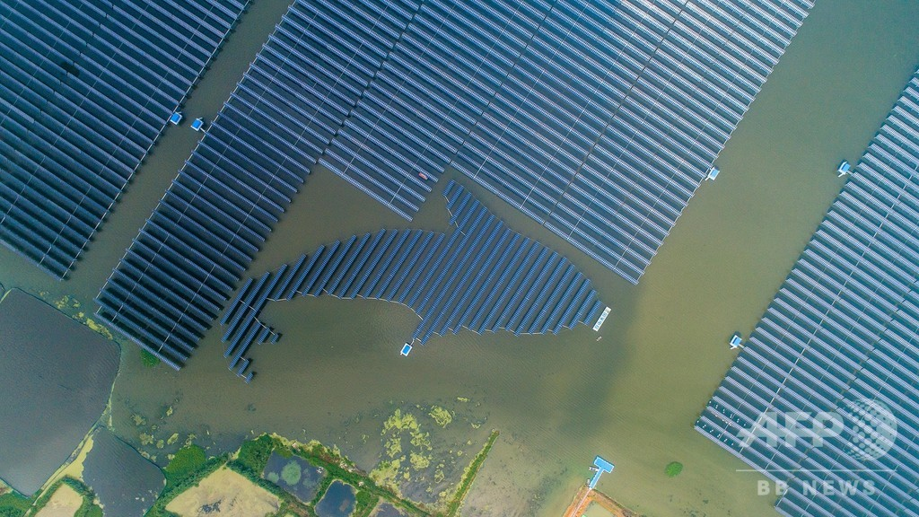 異色のコラボ…ソーラー発電と魚の養殖場 江蘇・泗洪