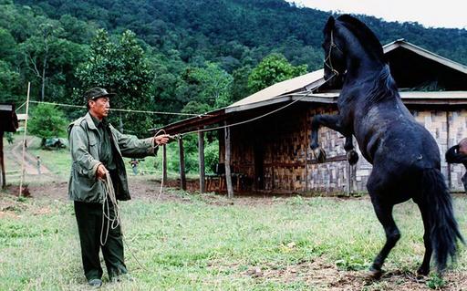 「麻薬王」クン・サ氏がヤンゴンで死去