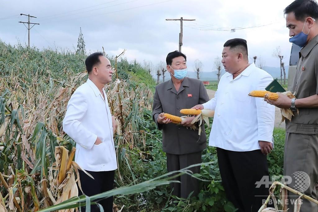 正恩氏が台風8号被災地を視察、被害小さく「幸運」と評価