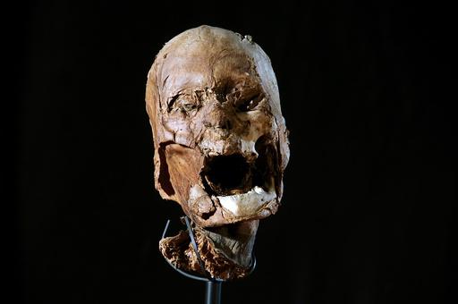 仏国王の頭部は「偽物」、先行研究覆すDNA分析結果