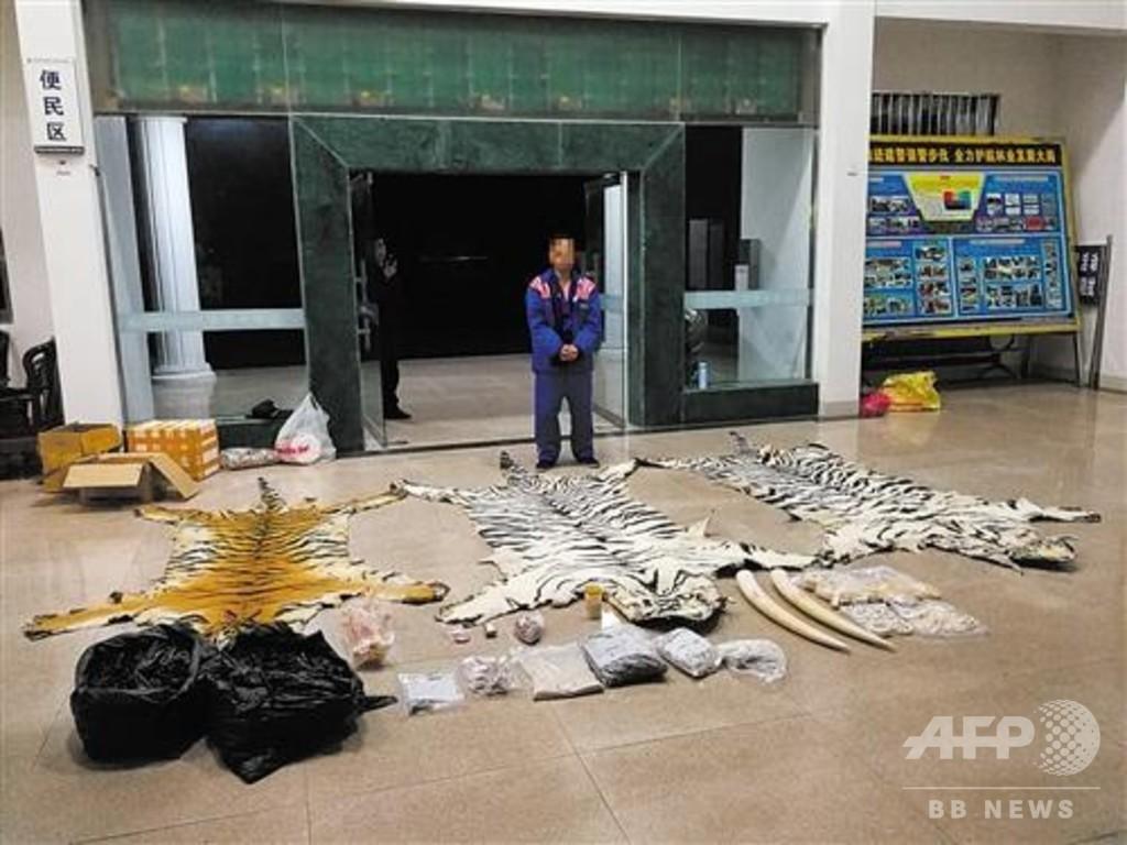 宅配便で「トラの皮」などを発送 3人逮捕 中国・広西