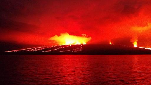 ガラパゴス諸島イサベラ島の火山が噴火