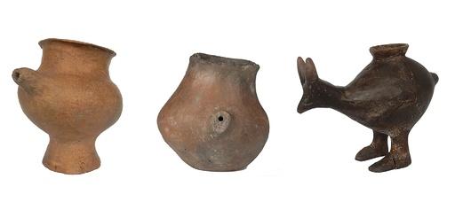 先史時代の「哺乳瓶」発見、離乳期に使用か 研究