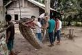 男性襲った巨大ニシキヘビ、住民たちに食べられる インドネシア