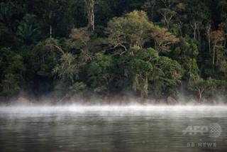 ブラジル先住民10人以上を違法採金業者が殺害か 検察が捜査