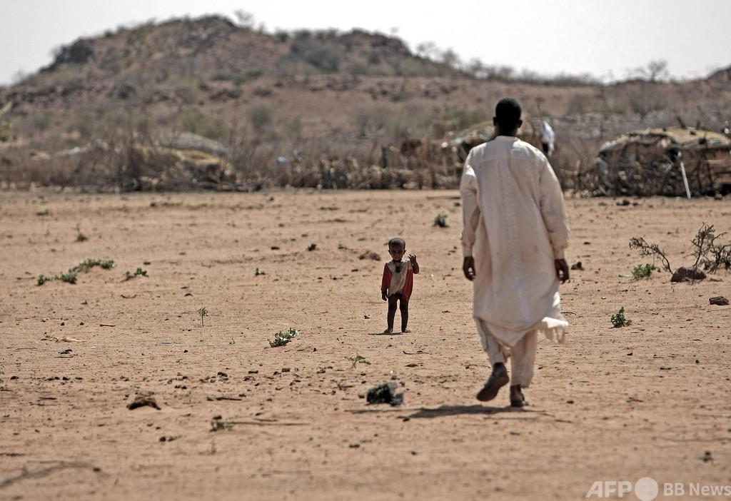 チャドで遊牧民と農民が衝突、22人死亡 発端は牛