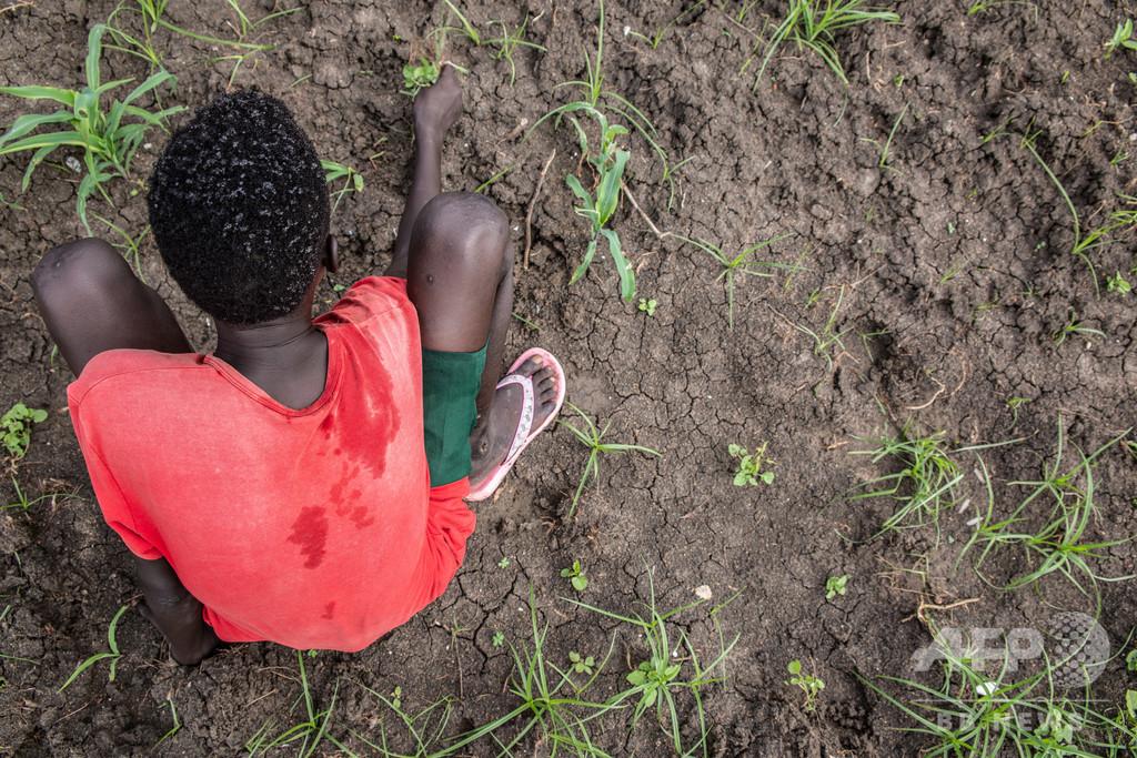 元子ども兵士に未来と希望を、南スーダンで広がる支援の輪