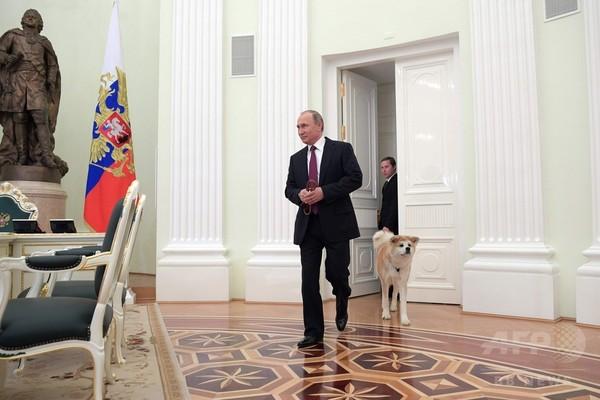 活況に沸くロシア株式市場、日ロの関係改善期待も