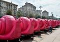 ピンクの巨大カタツムリが大集結、その目的は?ウクライナ