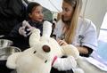 「テディベア病院」、ぬいぐるみの診察楽しむ子どもたち スイス