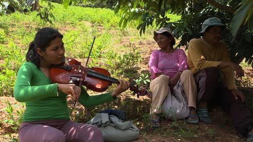 動画:日中はコカ畑作業、夜はビオラ奏者、10代を想う交響楽団 ボリビア