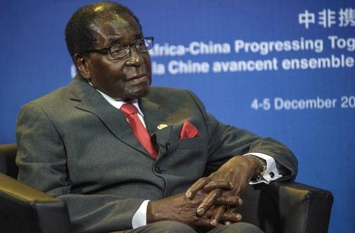 ジンバブエ大統領、アフリカ連合に牛300頭寄付 国内は凶作