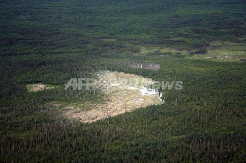 宇宙からも見えます!世界最大のビーバー・ダム発見 カナダ