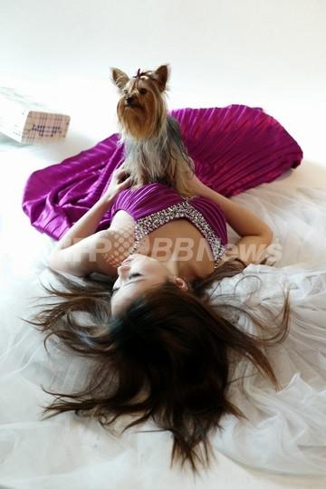 「犬は1世帯1匹まで」、上海で新条例施行