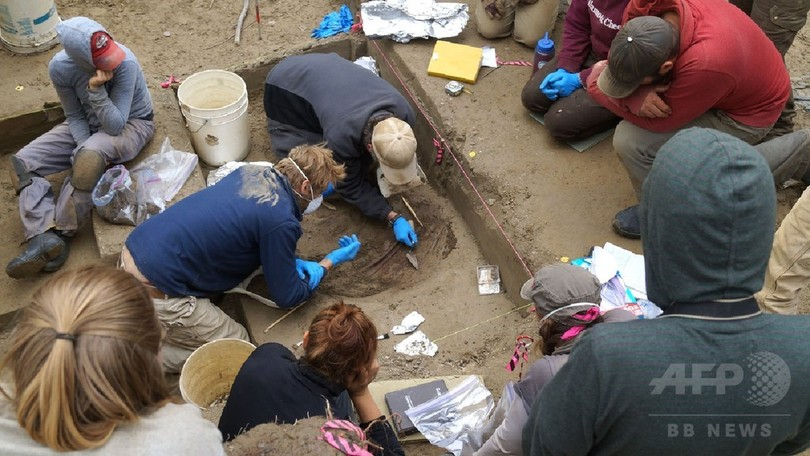 1万1500年前の女児、新集団に所属 遺伝子で判明