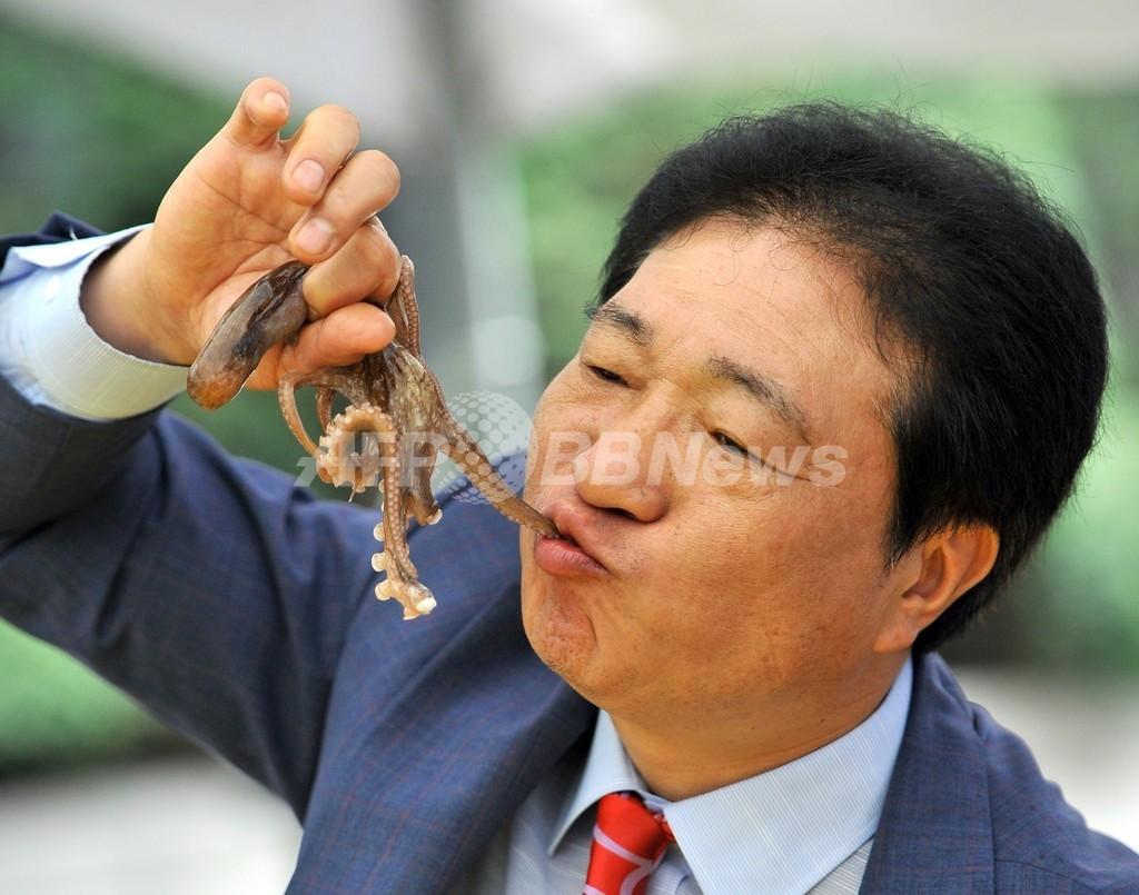 動くタコの足を「パクリ」、韓国でイベント