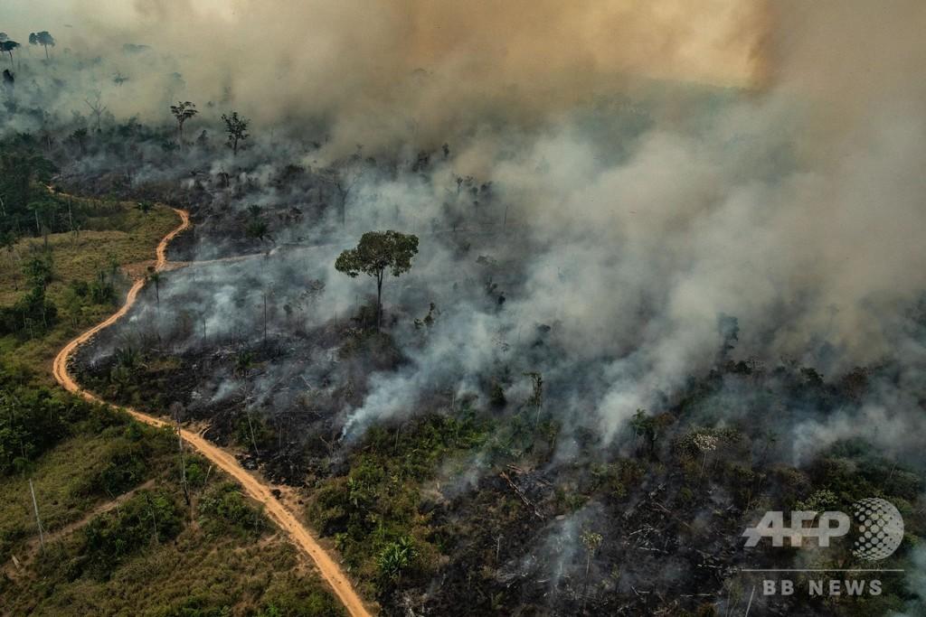G7、アマゾン消火活動に21億円支援へ 消防飛行機など