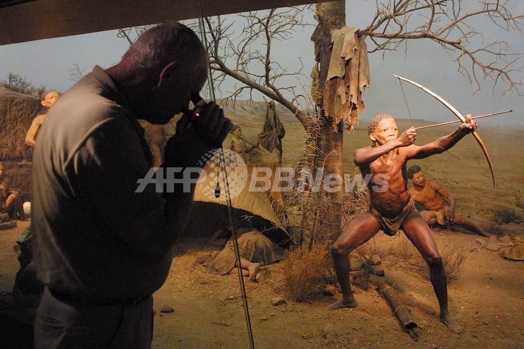 狩猟採集民では戦闘はまれ、研究