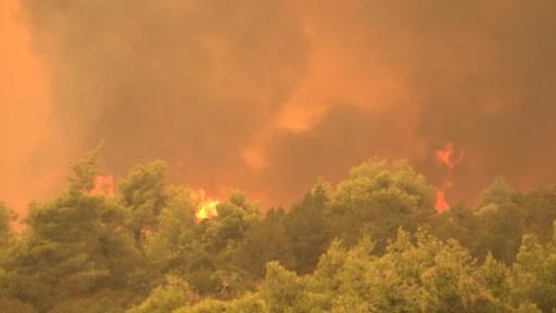動画:ギリシャ・エビア島で大規模森林火災、住民数百人が避難