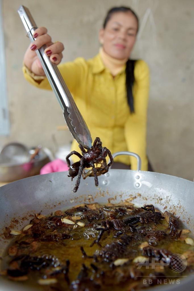 名物タランチュラ料理が消える⁉ 森林伐採と乱獲で カンボジア