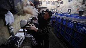 動画:ニワトリを頭上で回し贖罪、ユダヤ教の儀式