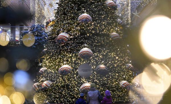 クリスマスツリーに隠れ密航試みる、仏で16人拘束