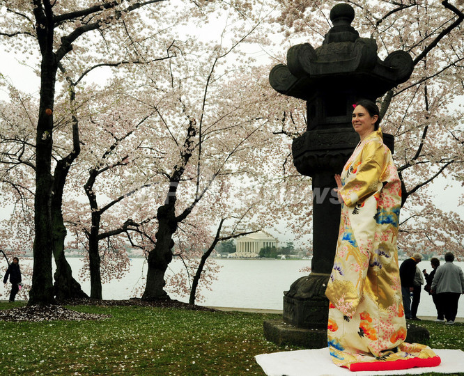 米首都、桜と灯籠バックに着物でポーズ