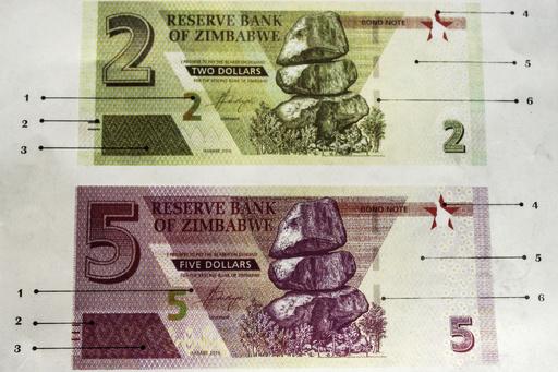 ジンバブエ、「代理」ドルを発行 ハイパーインフレの再来懸念で