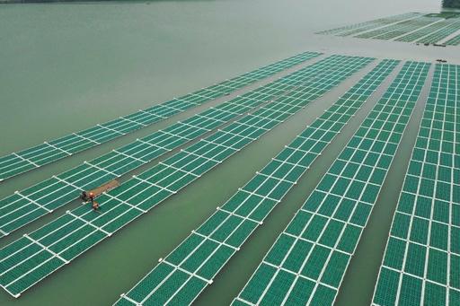 人工浮床で水質改善、温州市の「水がめ」を守る 浙江