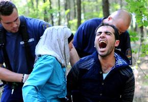 「シリアでは死に直面・・・有刺鉄線など怖くない」 ハンガリーに入る難民たち