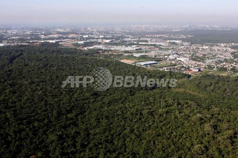 ブラジル小型機墜落は緊急着陸失敗か、24人死亡