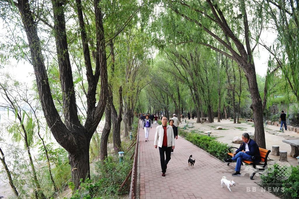 ウオーキングだけでポイントに、中国の歩行計アプリ 一部は投資誘導も