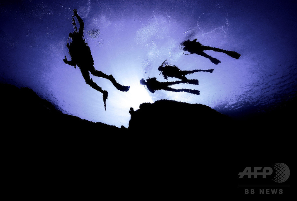 サメの海で2日間漂流し生還、ダイバー2人が体験語る コロンビア