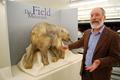 永久凍土から発見の子マンモス、世界10都市で公開へ