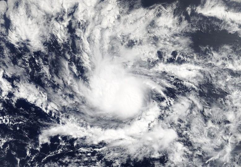 大西洋で今年初のハリケーン発生、小アンティル諸島方面へ西進