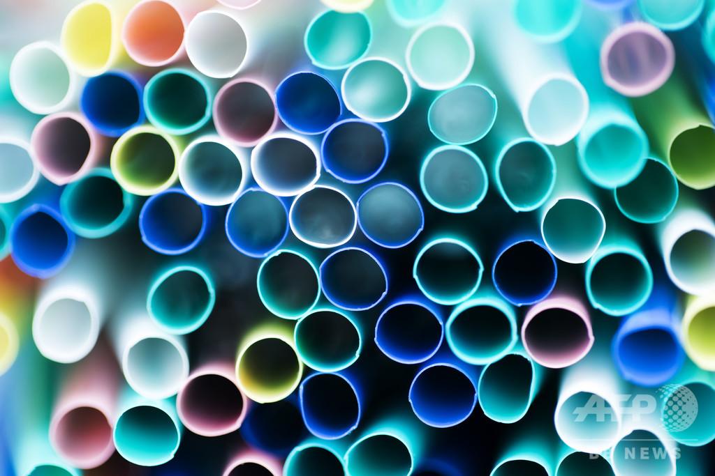 使い捨てプラ、欧州全域で禁止へ EU議会が法案可決