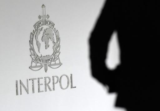 インターポール、小児性愛者のネットワークを解体 子ども50人救出