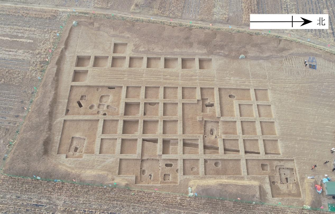 新石器時代の紅山文化の集落跡、人為的に安置された人骨が出土 中国・遼寧省